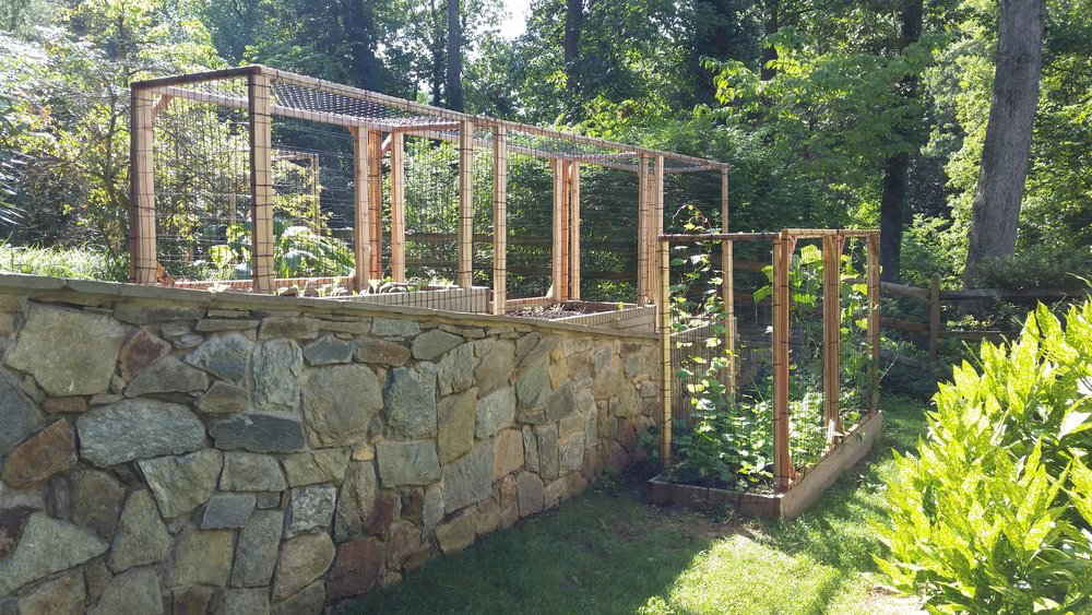 Critter Cages