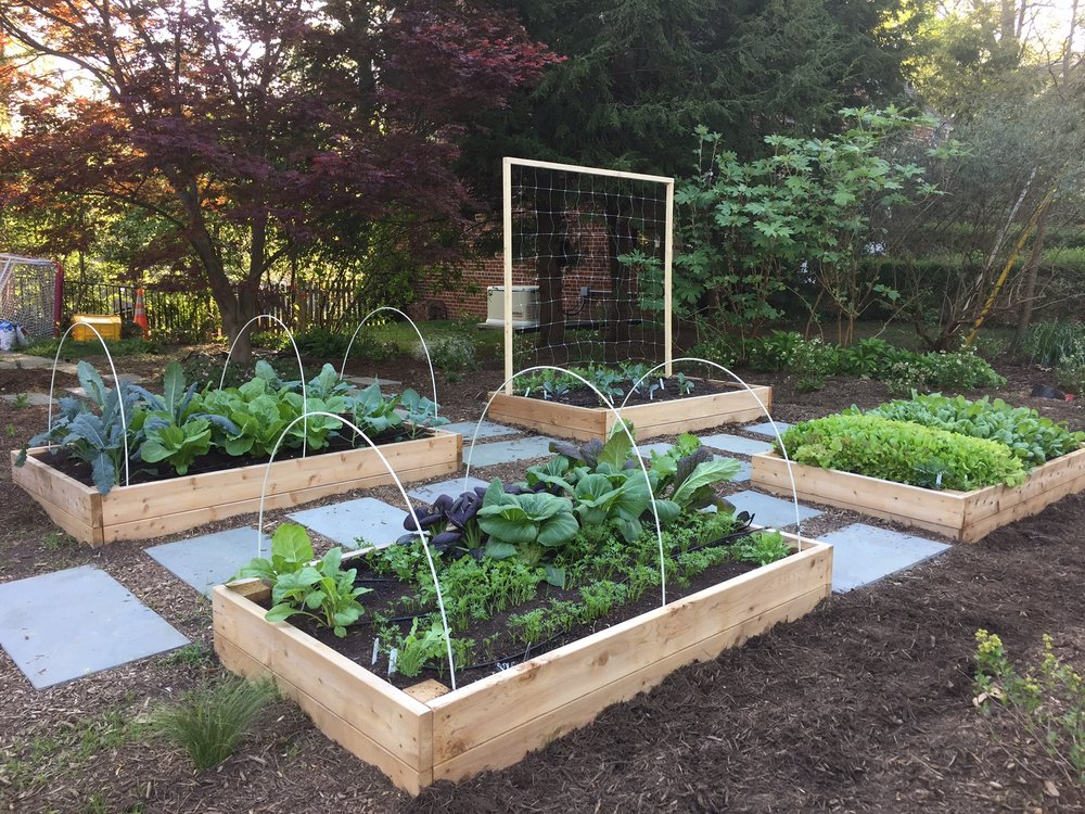 Raised Bed Garden with Trellis and Flagstones