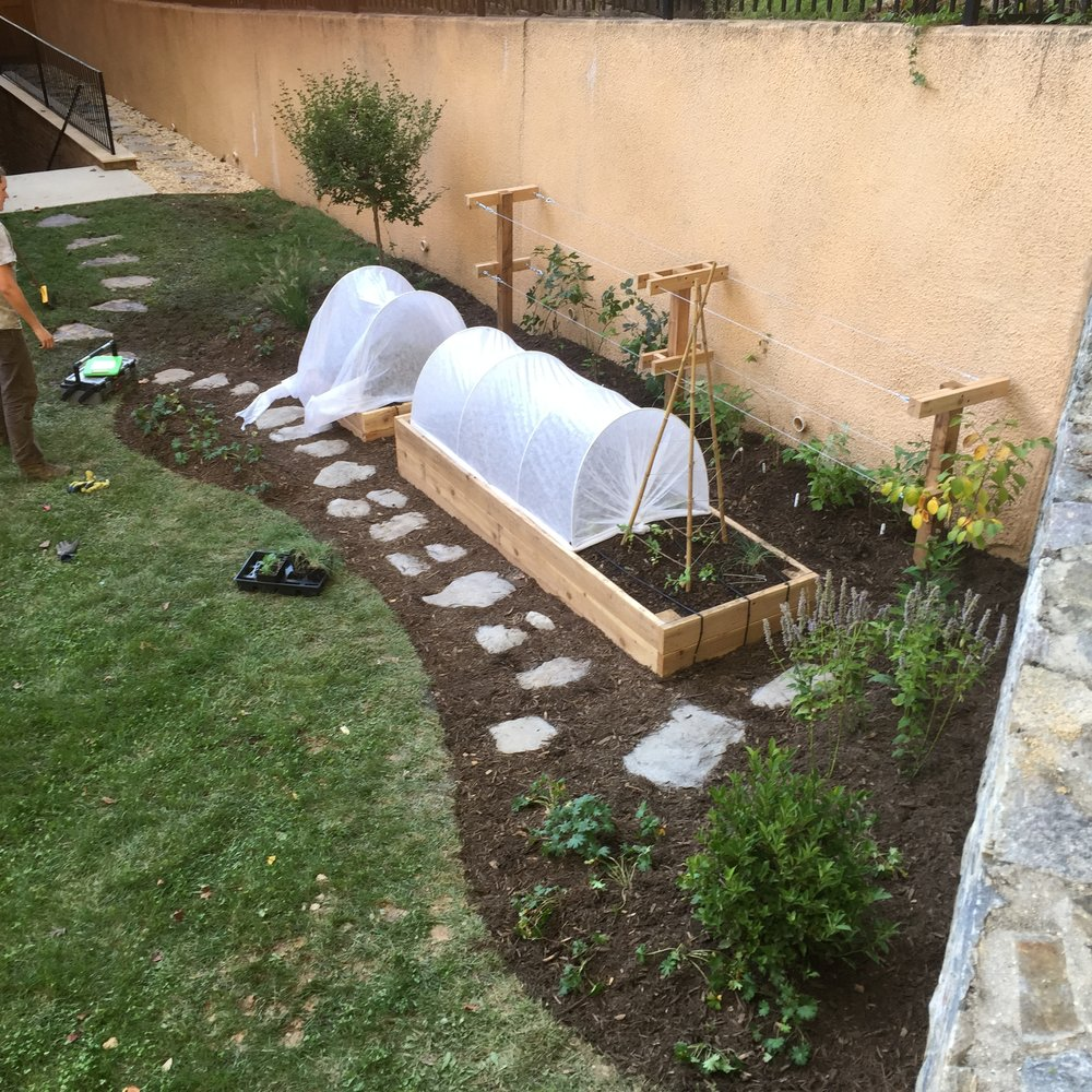 Raised Bed Garden, Blackberry Trellis, Stone Pathway, Mulching