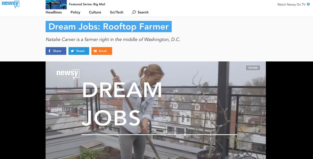 Newsy Dream Jobs: Rooftop Farmer - May 2018