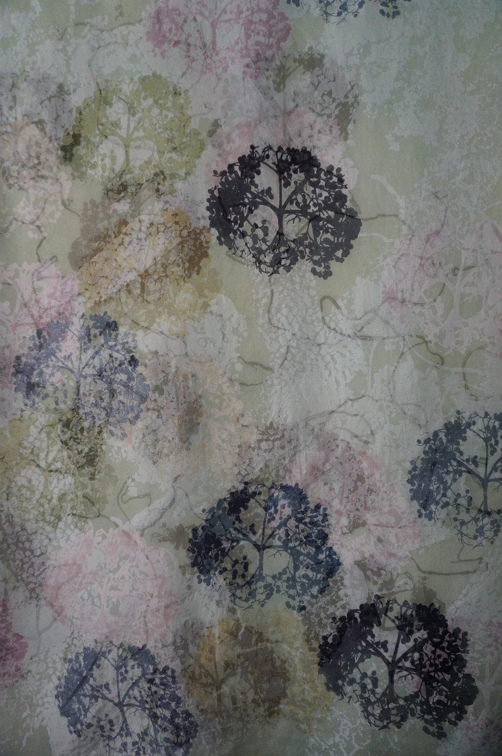 Elderflower/Rain
