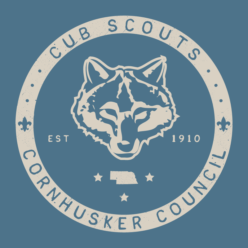 10764_cubScouts.png
