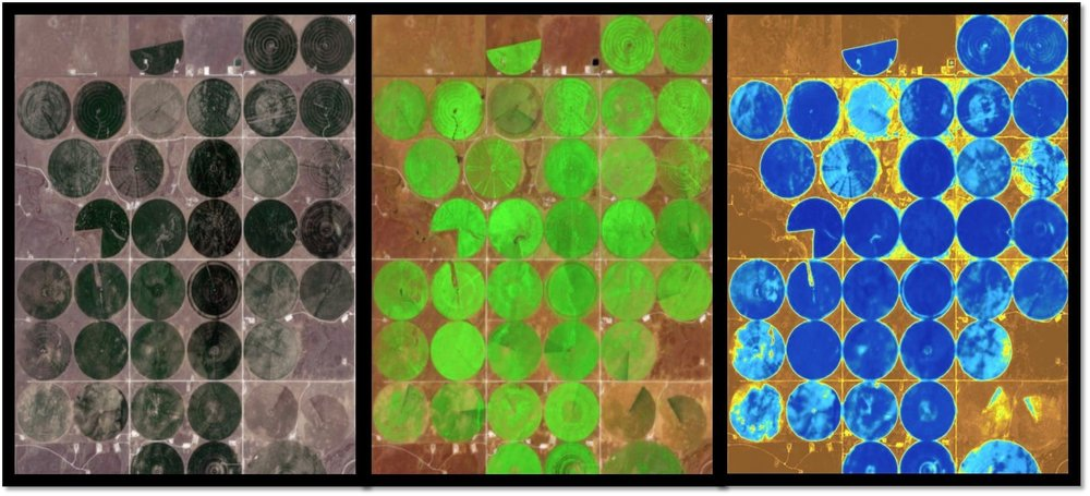 agricultural fields in various sentinel-2 band combinations. Left: Natural colour (displays the optical wavelengths our eyes naturall detect). middle: short wave infrared vegetation (showing the most vigorous vegtation in bright green). right: Water Mositure index (showing the highest moisture levels in blue).