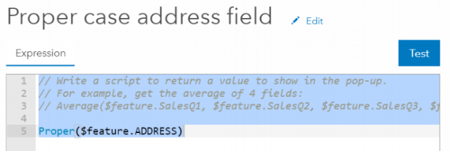 ProperCaseAddressFieldExpressionEditor.png