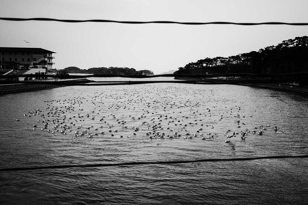 Ishinomaki City Miyagi. Tohoku,Japan. 2011   ©    Go Nakamura     photography