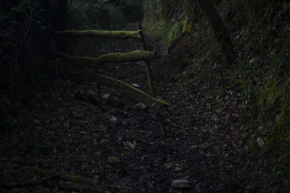 Camino de Santiago. Triacastela → Morgade 30km. Northeastern Spain. 2016  ©Go Nakamura photography