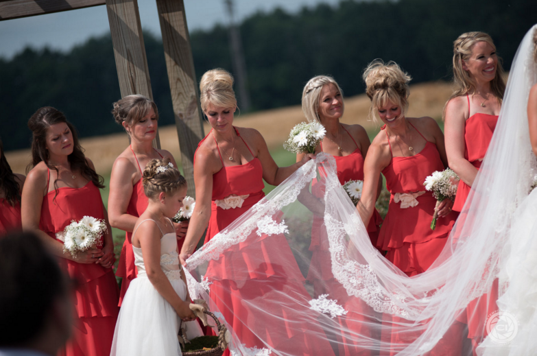 veil and bridesmaids.png