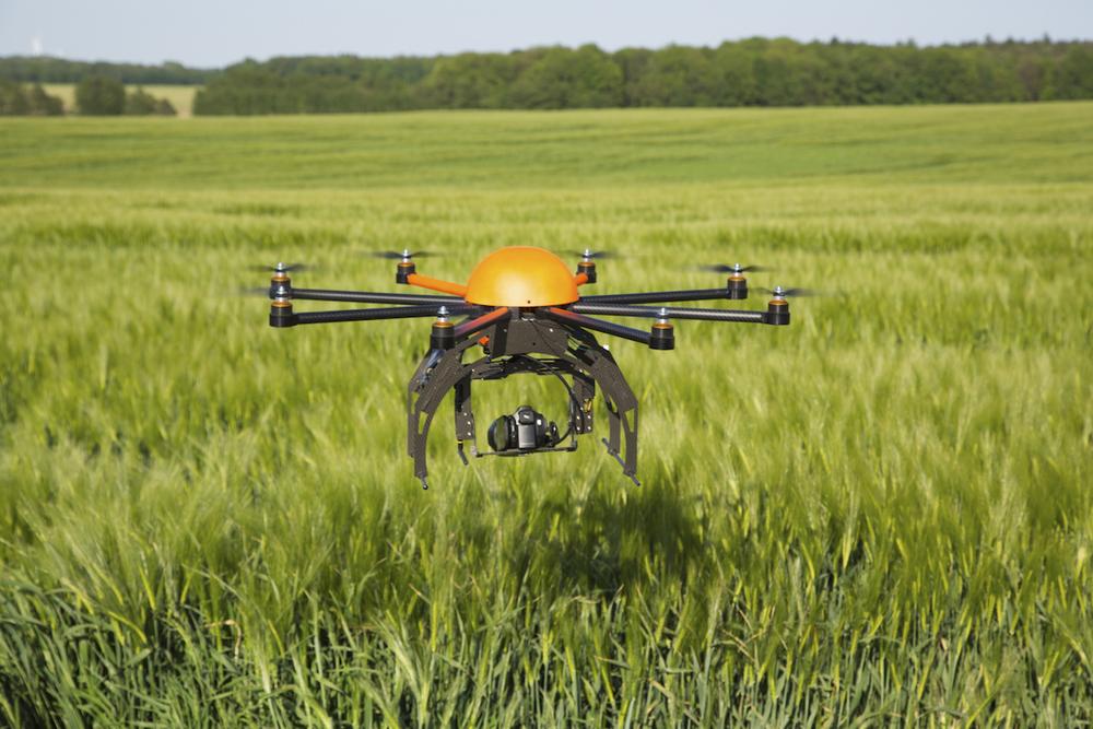drone-465239747.jpg