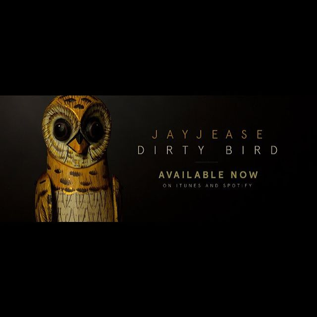 What better way to celebrate the holidays than with a little JayJease bouncing off the walls of your festively decorated homes!! You can listen to 'Dirty Bird' by JayJease on all streaming platforms NOW.  #happythanskgiving #jayjease #dirtybird