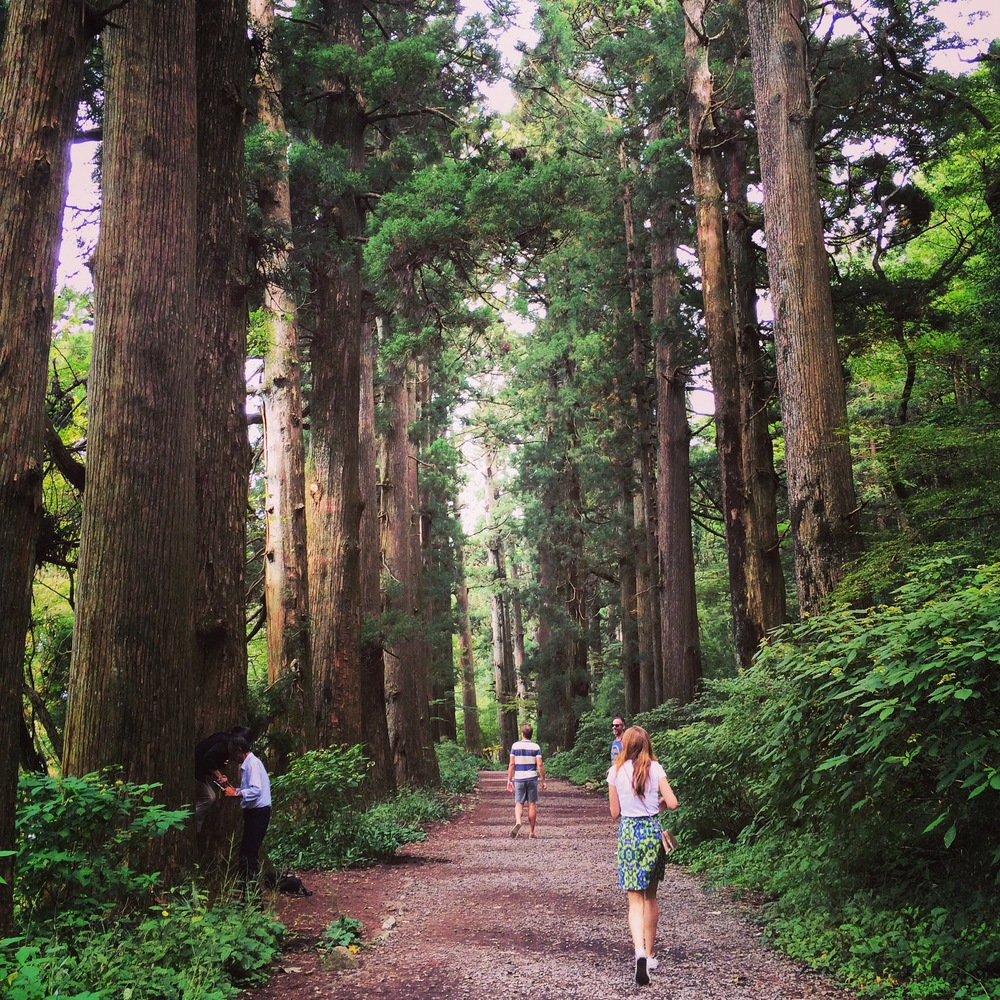 Cedar Avenue on Old Tokaido Road