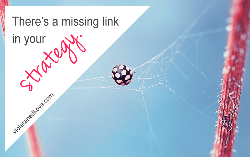 The Missing Link in Your Strategy & The Worst Marketing Mistakes   Violeta Nedkova's Blog