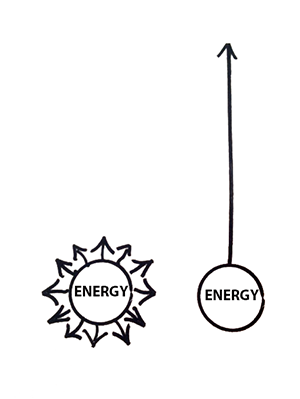 Illustration from Essentialism