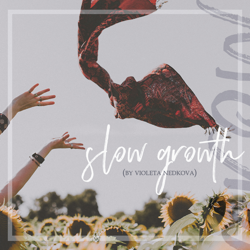 How fast does your small business need to grow? Be honest and own it. >> violetanedkova.com