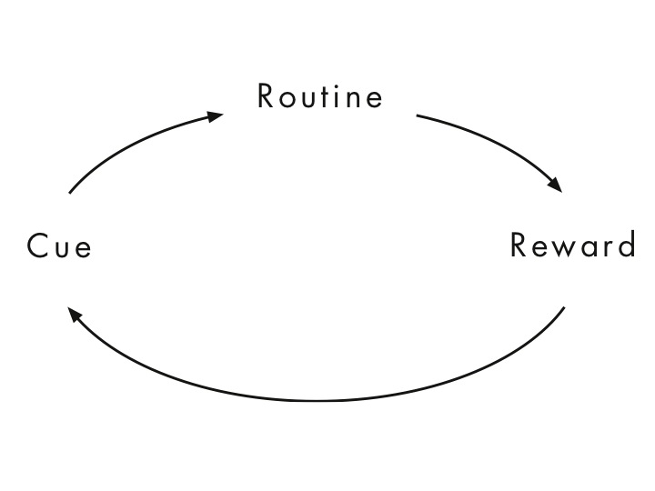 This is how the habit loop works, from The Power of Habit book. Understanding this will help you improve your habits.