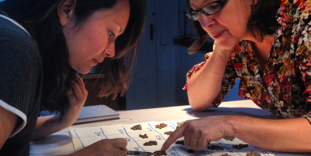 Noemi Cawabata e Eliane Passerine analisando um Gráfico Visual vrLink.