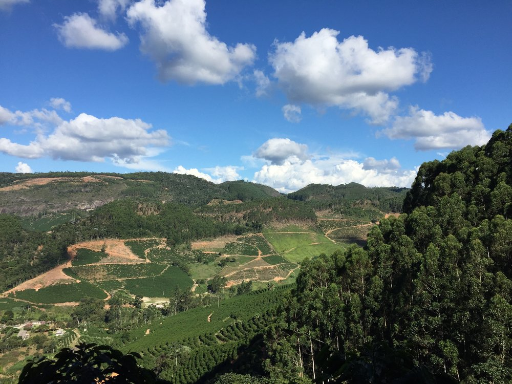 Fazenda Marapé