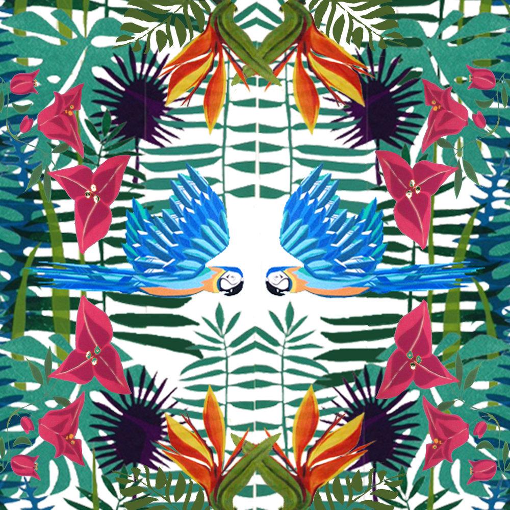 tropicalmirrorGcard.jpg