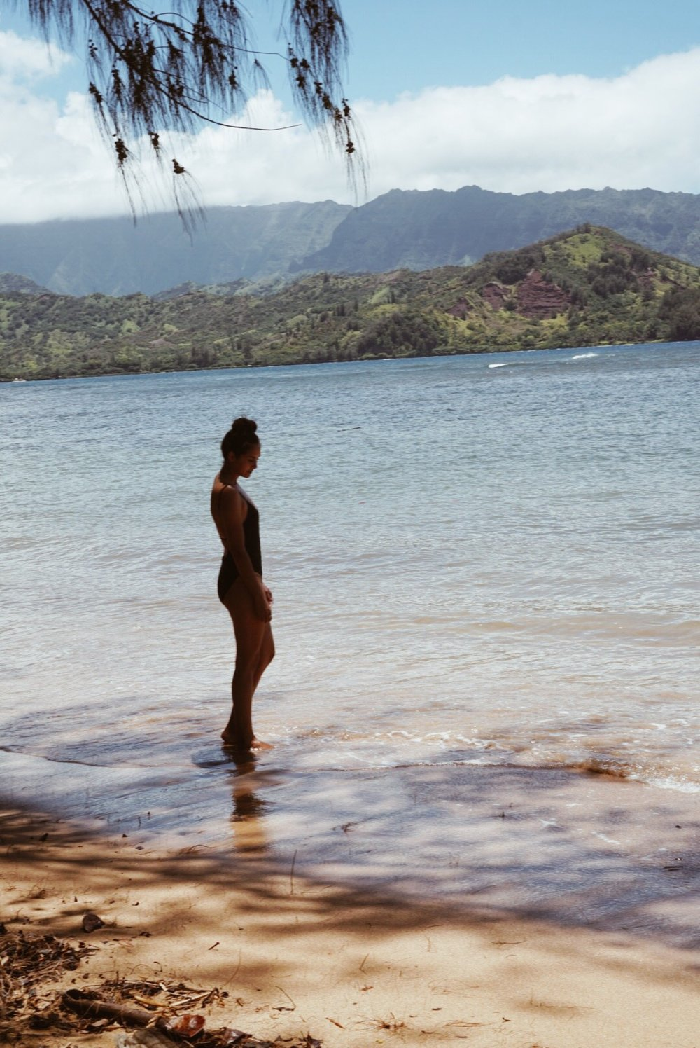 Nu Swim  bathing suit
