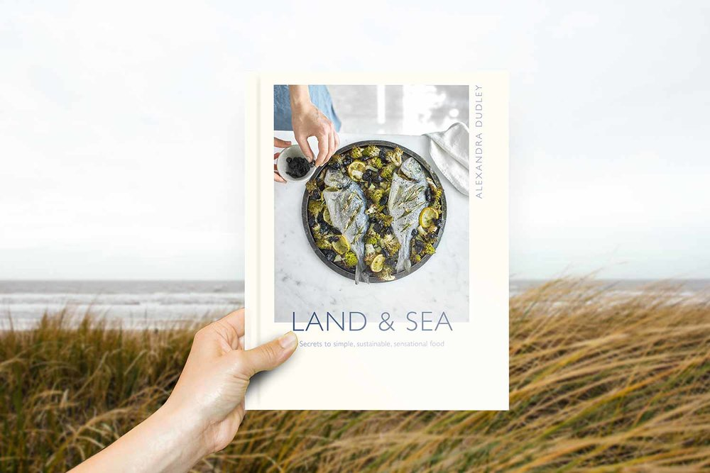 Alexandre Dudley Land & Sea recipe book