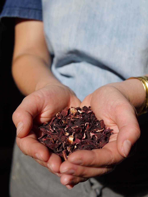 Herbal-tea-hibiscus.jpg