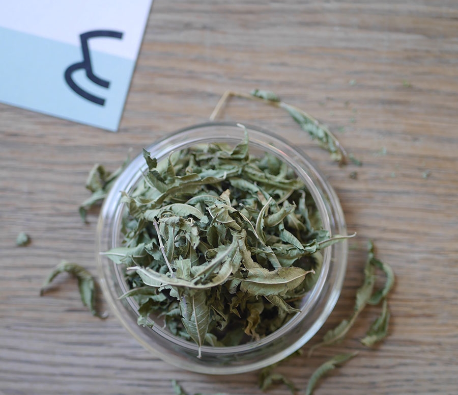 Lemon-Verbena-brewer's-pick-leaf.jpg