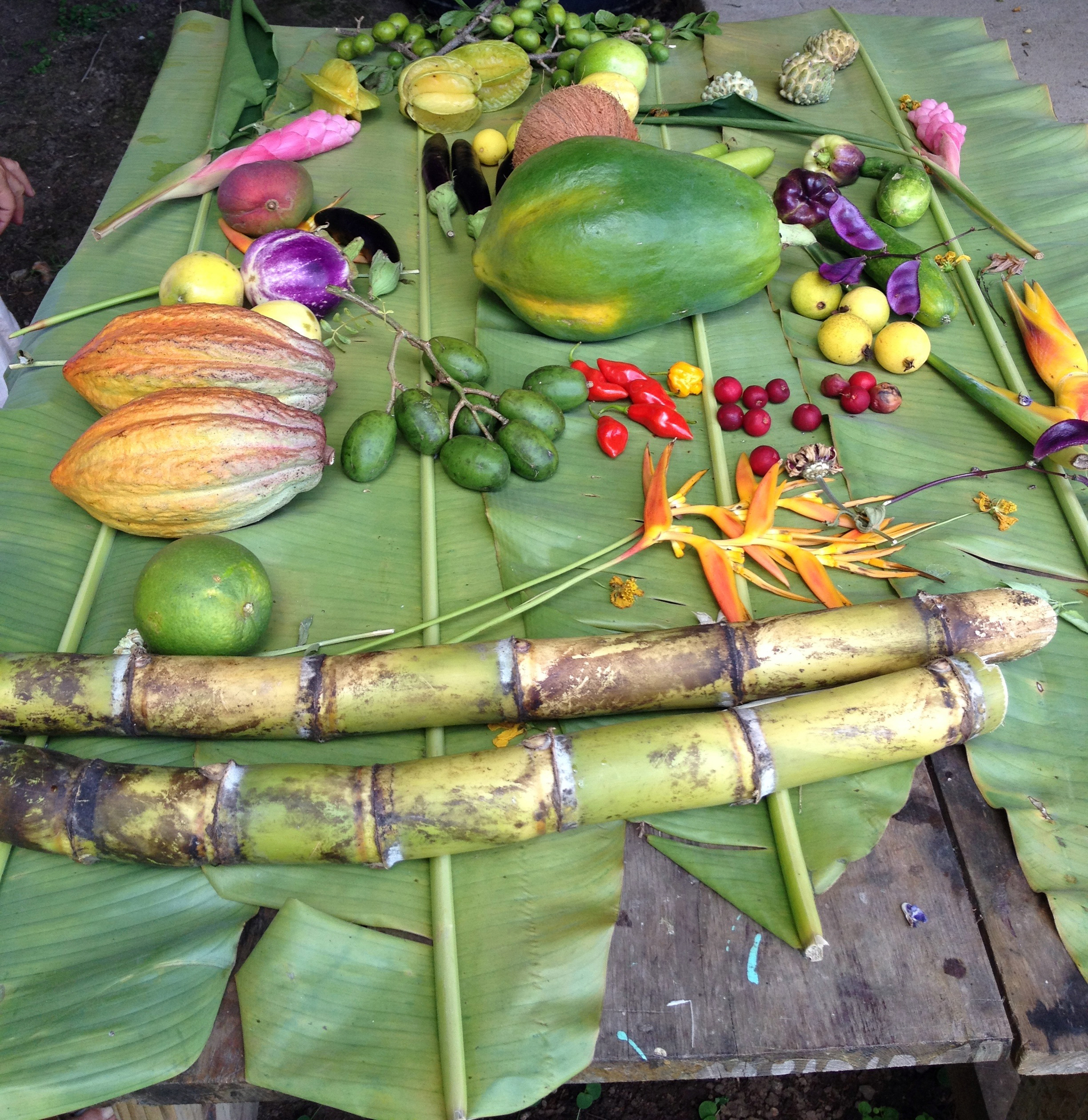 A brilliantly colored array of tropical fruit poised atop enormous banana leaves awaits the chef's pleasure.