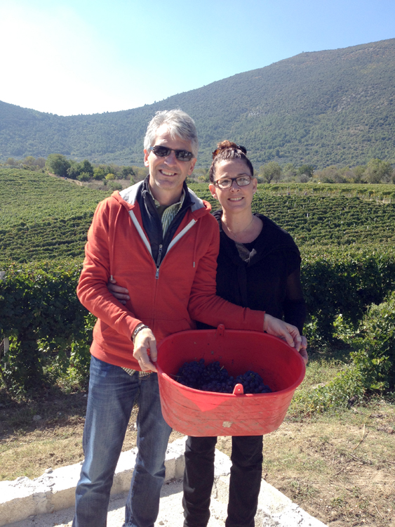 Jonathan and I pick some grapes