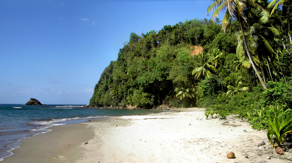 Hampstead_Beach_(Dominica).jpg