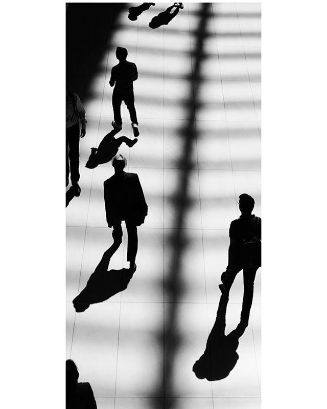 "New print ""Progression"" Edition 1 of 8, silver gelatin print #artists  #visualarts  #fineart_photobw #artofvisuals  #cassandrazampini  #artopening  #artgallery #artconsultant #artcollect  #artcollector  #contemporaryart  #contemporaryartcurator #contemporaryartgallery  #contemporaryphotography  #artdealer #contemporaryartcollector #gallery  #interiordecoration  #interiordesign  #curator  #modernart #contemporaryartist  #ilovethiswork  #greatart #collectionneurs"