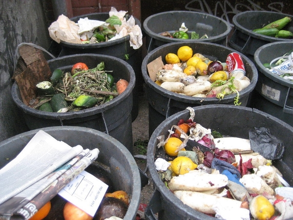 Household food going to waste. Image: Petrr, used via cc-by-2.0