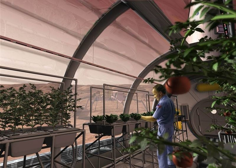 Future astronauts may grow some of their meals inside greenhouses, such as this Martian growth chamber, where fruits and vegetables could be grown hydroponically, without soil. PHOTO MARS OASIS RENDERING BY PAT RAWLINGS, COURTESY NASA SAIC