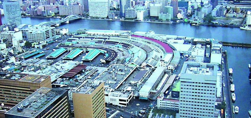A bird's-eye viewof Tsukiji Market. PHOTO: JENS TOBISKA, WIKIMIDEA COMMONS
