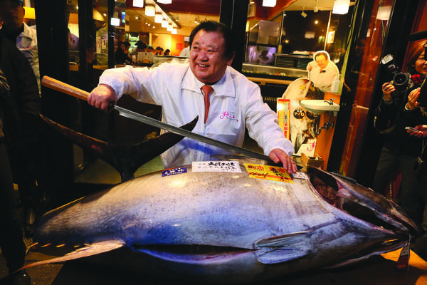 Kiyoshi Kimura, president of Kiyomura K.K, poses for photos with a 180.4 kilograms (397 pounds) fresh tuna after the year's first auction at Tsukiji Market on January 5, 2015 in Tokyo, Japan. A fresh whole tuna weighing 180.4 kilograms (397 pounds), sold for 4.51 million yen (approximately $37,500) by Sushi Zanmai, a Tokyo-based sushi chain operator. PHOTO:KIMURA IMAGE KEN ISHII/GETTY IMAGES