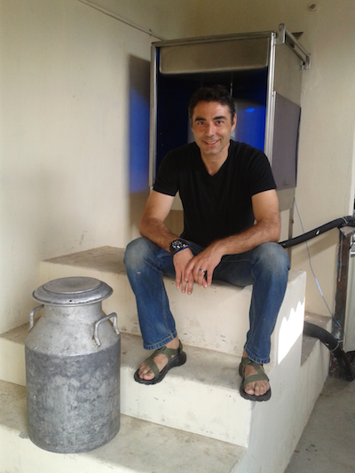 Sorin Grama, now an entrepreneur-in-residence at MIT, found an unexpected solution for a simple problem in India: how to keep milk from small dairies from spoiling before it gets to distributors. But the path to the solution was far from simple.