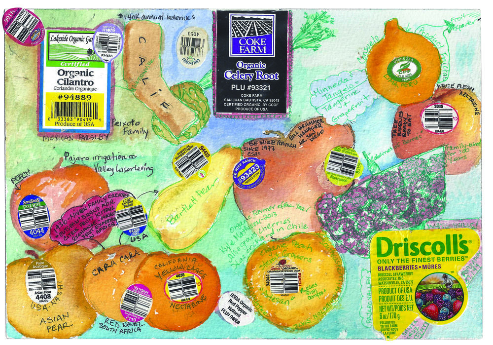 fruit-sticker-map.jpg