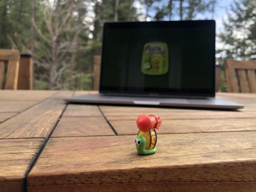 Blog — RocketSnail