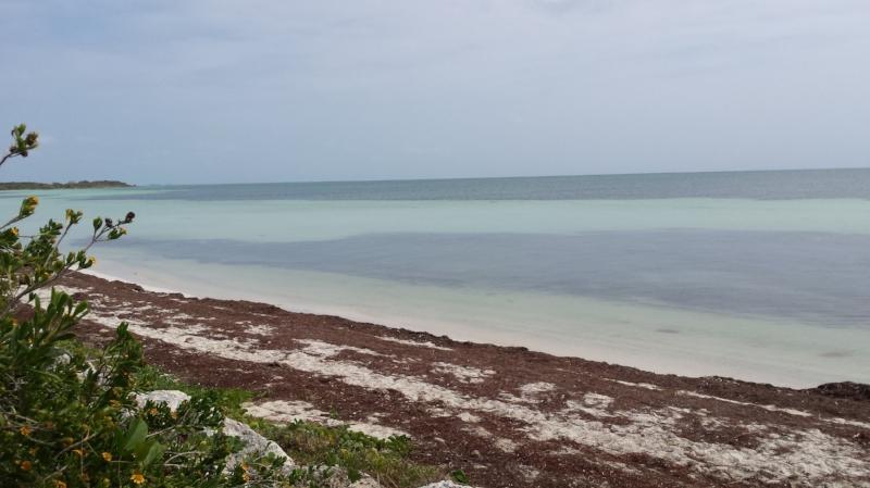 Beach on the Atlantic side of Bahia Honda