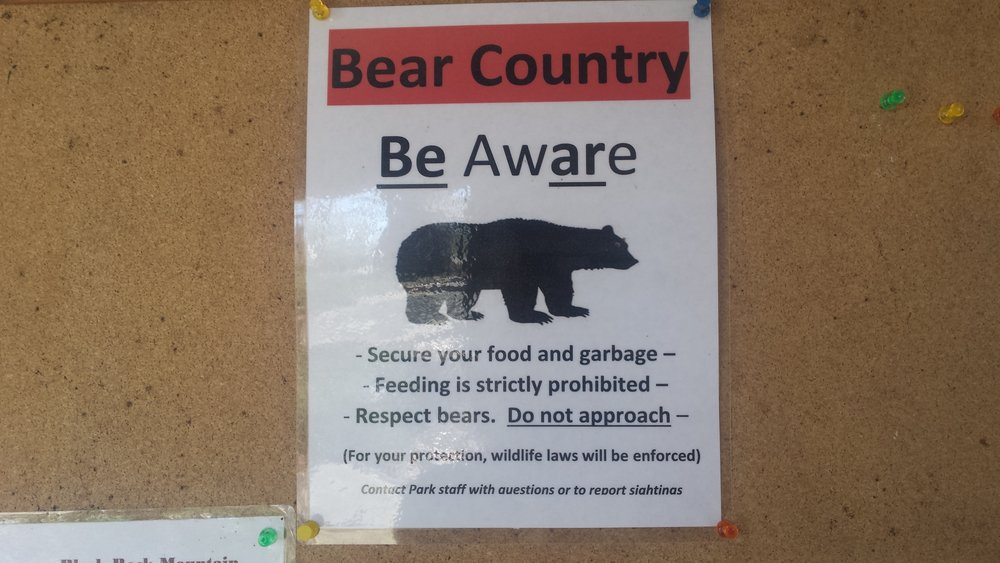 Yup, you have to sign a bear waiver.