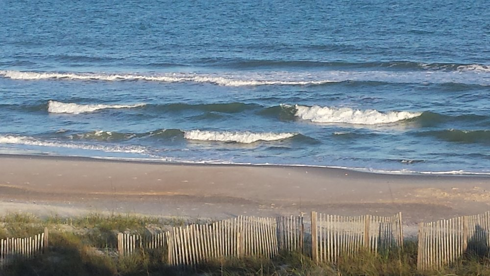Lovely beachs on St. George Island tuck up to white sand dunes where sea turtles nest.