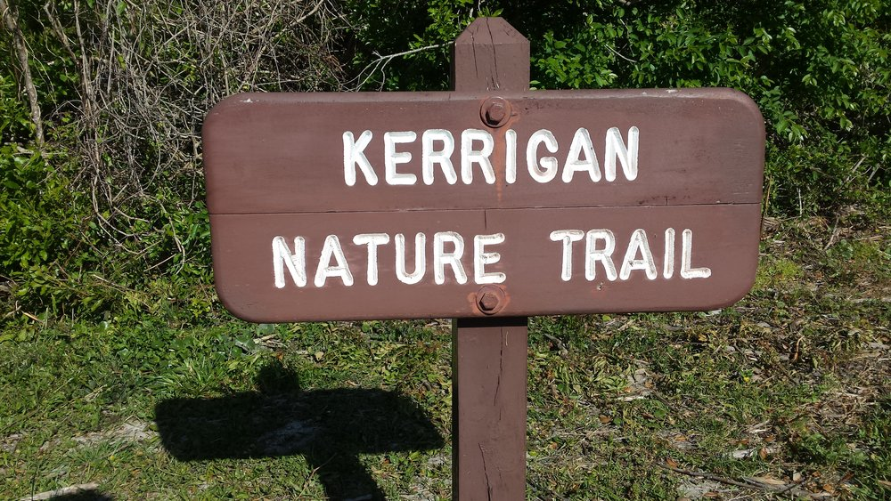 The Kerrigan Nature Trail at Huntington Beach State Park