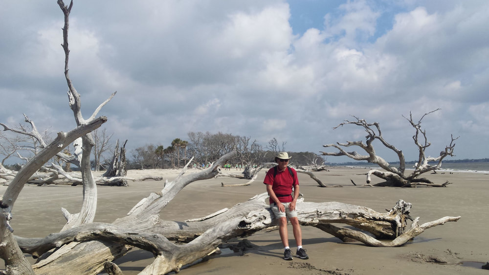 Jim chillin' among the weathered trees on Driftwood Beach, Jekyll Island, GA