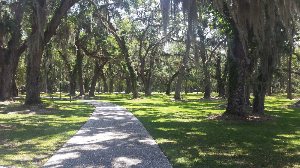 Bike paths thread around Jekyll Island. This one is through the historic village.