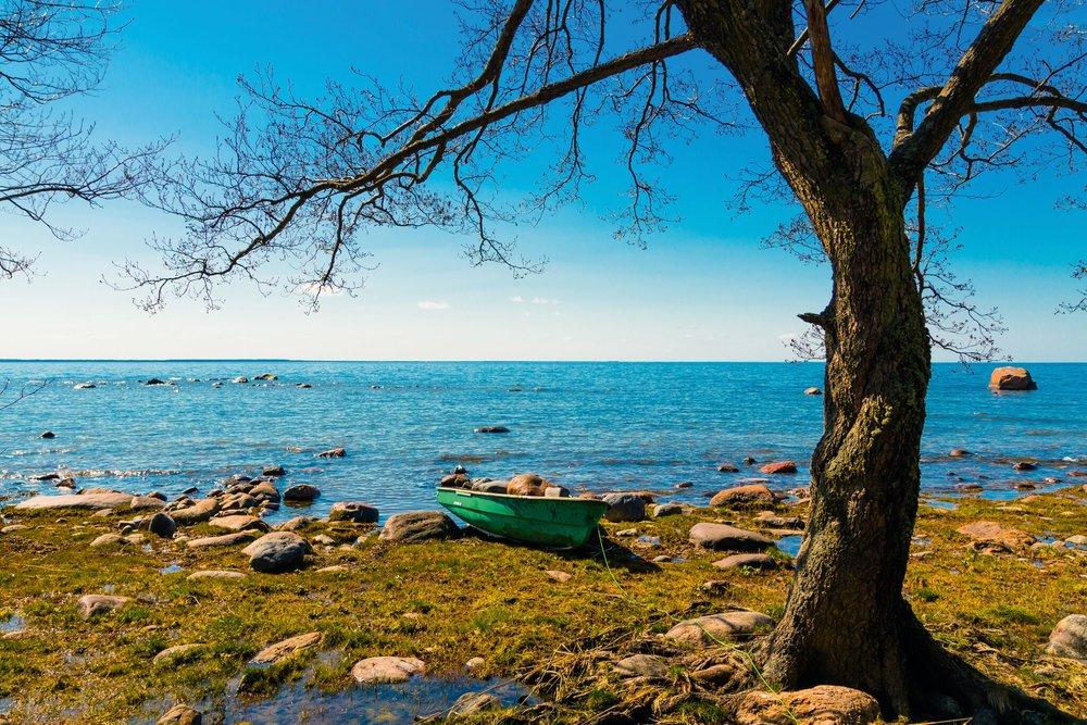 Baltikum-Nationalpark.jpg