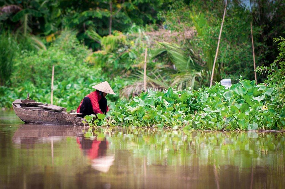 Vietnam-vietnamesin.jpg