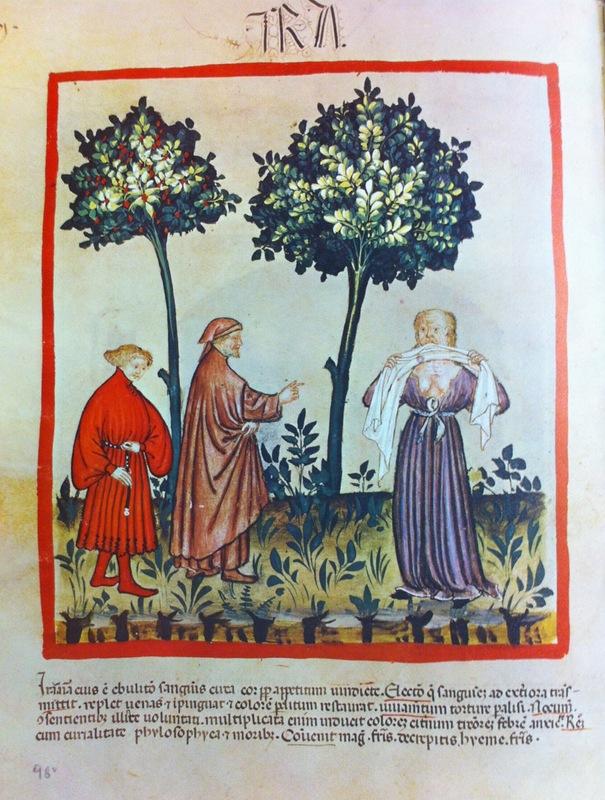 """Representation of Anger"" Tacuinum Sanitatis , SN2644, folio 98v; 1385–1390."