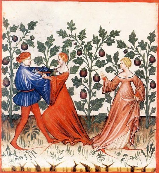 """Eggplants and their Aphrodisiacal Effects"" Tacuinum Sanitatis , SN2644, folio 31v; 1385–1390."
