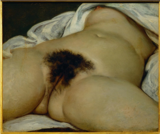 Gustave Courbet,  L'Origine du monde (The Origin of the World ), 1866, Oil On canvas, 46 x 55 cm, Musee d'Orsay, Paris https://en.wikipedia.org/wiki/L'Origine_du_monde#/media/File:Origin-of-the-World.jpg