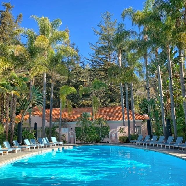 Case of the Mondays after an amazing weekend @hotelbelair #twonightsinbelair #twonightsincalifornia #TNIbelair #TNIcalifornia #TNIlosangeles #twonightsinlosangeles #dcmoments #hotelbelair #dorchestercollection