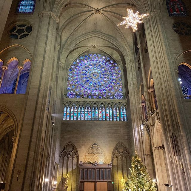 A favorite... Notre-Dame showing off during the holidays #twonightsinparis #TNIparis #twonightsinfrance #TNIfrance #notredame