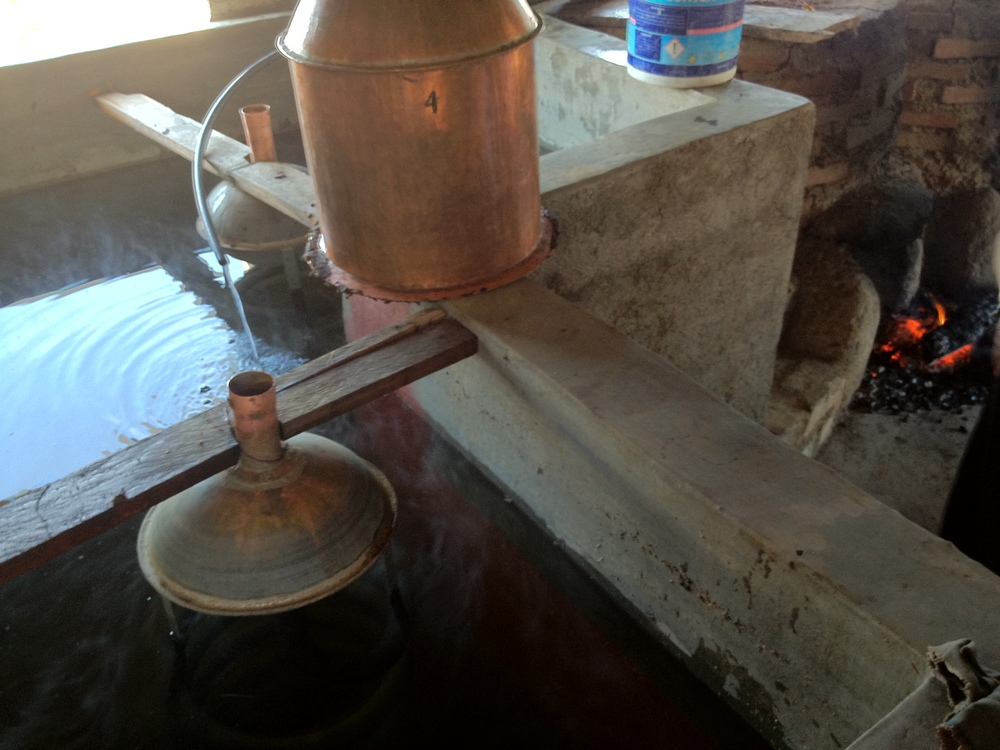 distilling the mezcal.JPG